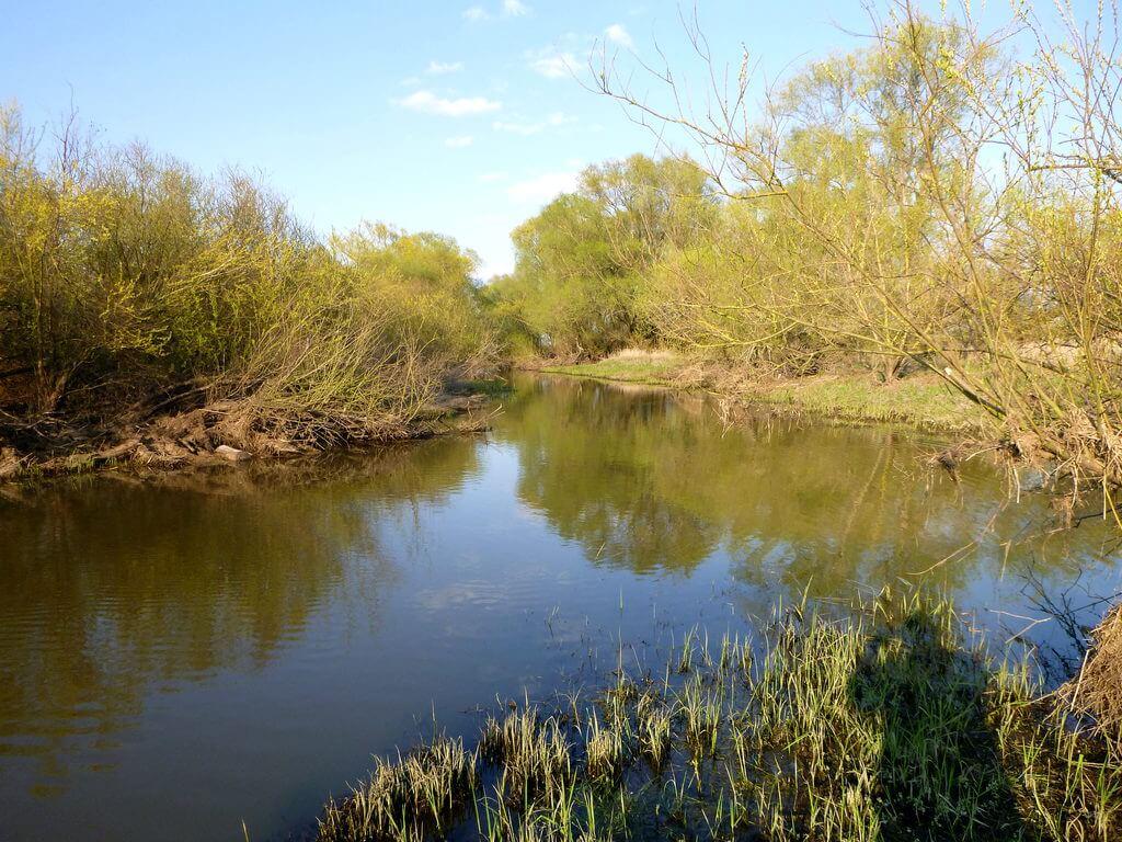 Kleiner Fluss in wilder Landschaft