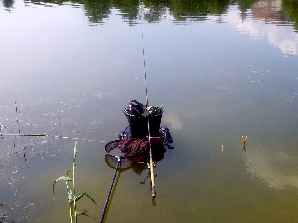 Matchrute zum Rotfedernangeln im Wasser aufgebaut