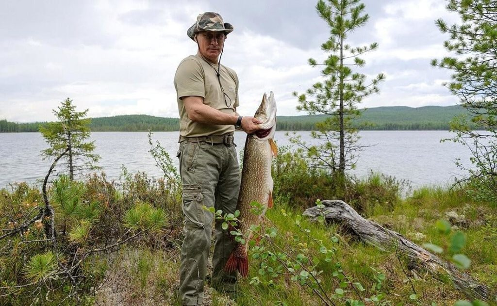Wladimir Putin konnte einen stattlichen Hecht beim Angeln fangen