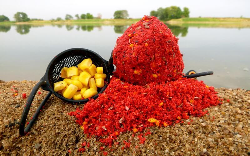 rotes Grundfutter und Mais für die Güstern