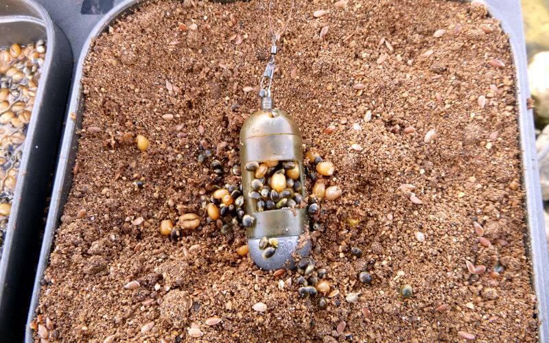 trockenes Angelfutter für Rotaugen im Sommer